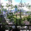 ベランダ植物観察記録2015 (6)