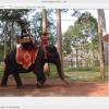 複数の写真からfacebookのカバー写真を作る方法