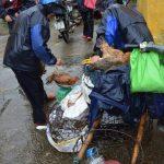 シェムリアップ~ホイアン旅行 ベトナム編(3/11) – ホイアン市場