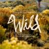 今日の映画 – わたしに会うまでの1600キロ(Wild)